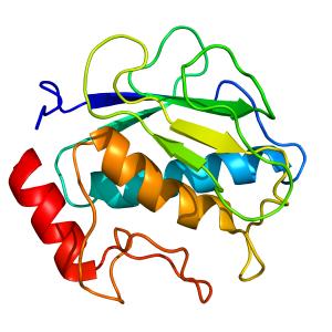 mmp1_cat | custom organic synthesis