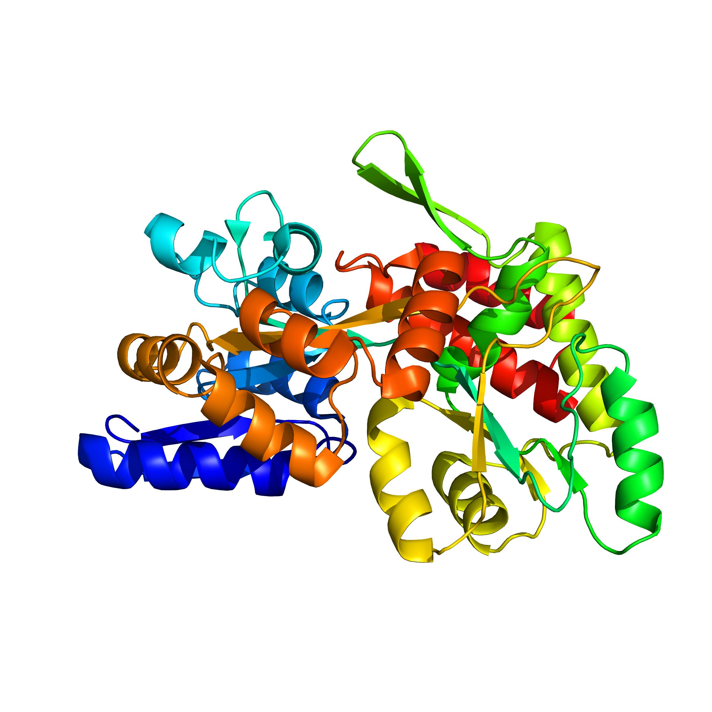 MBP | Custom Protein Service