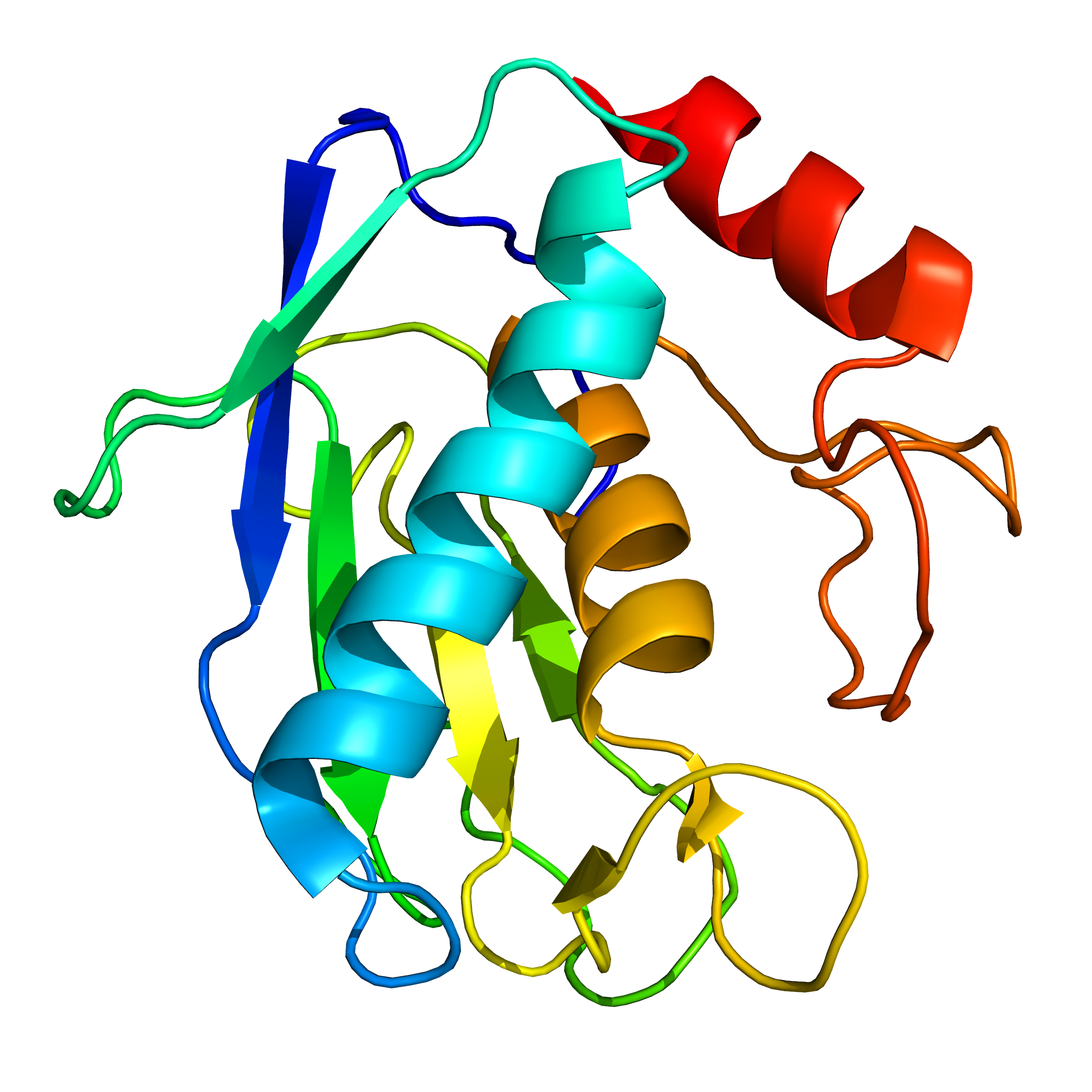mmp9 | recombinant proteins offer