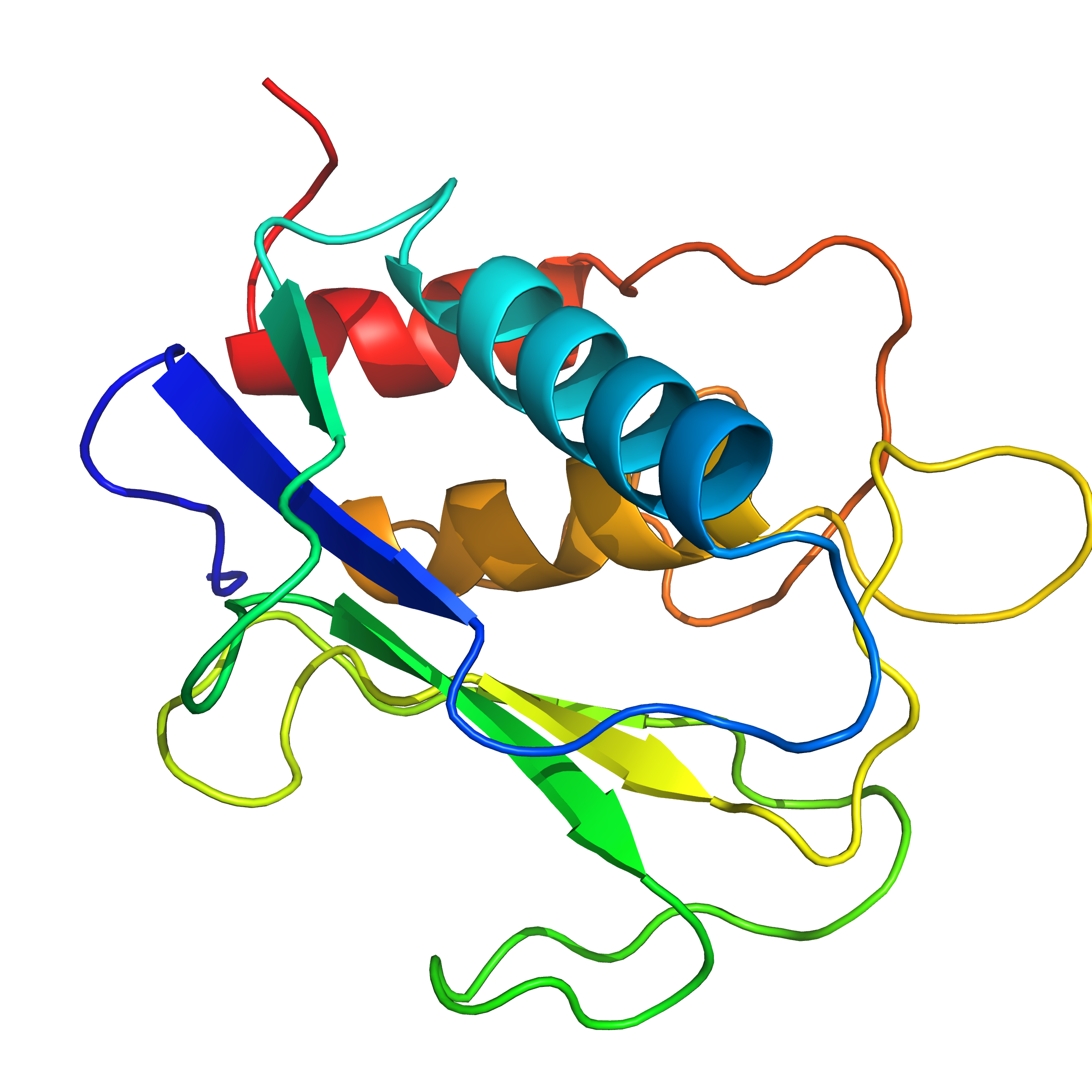 mmp2_cat | recombinant proteins offer