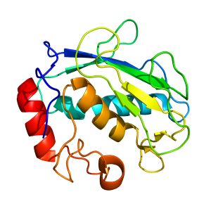 mmp3 | recombinant proteins offer