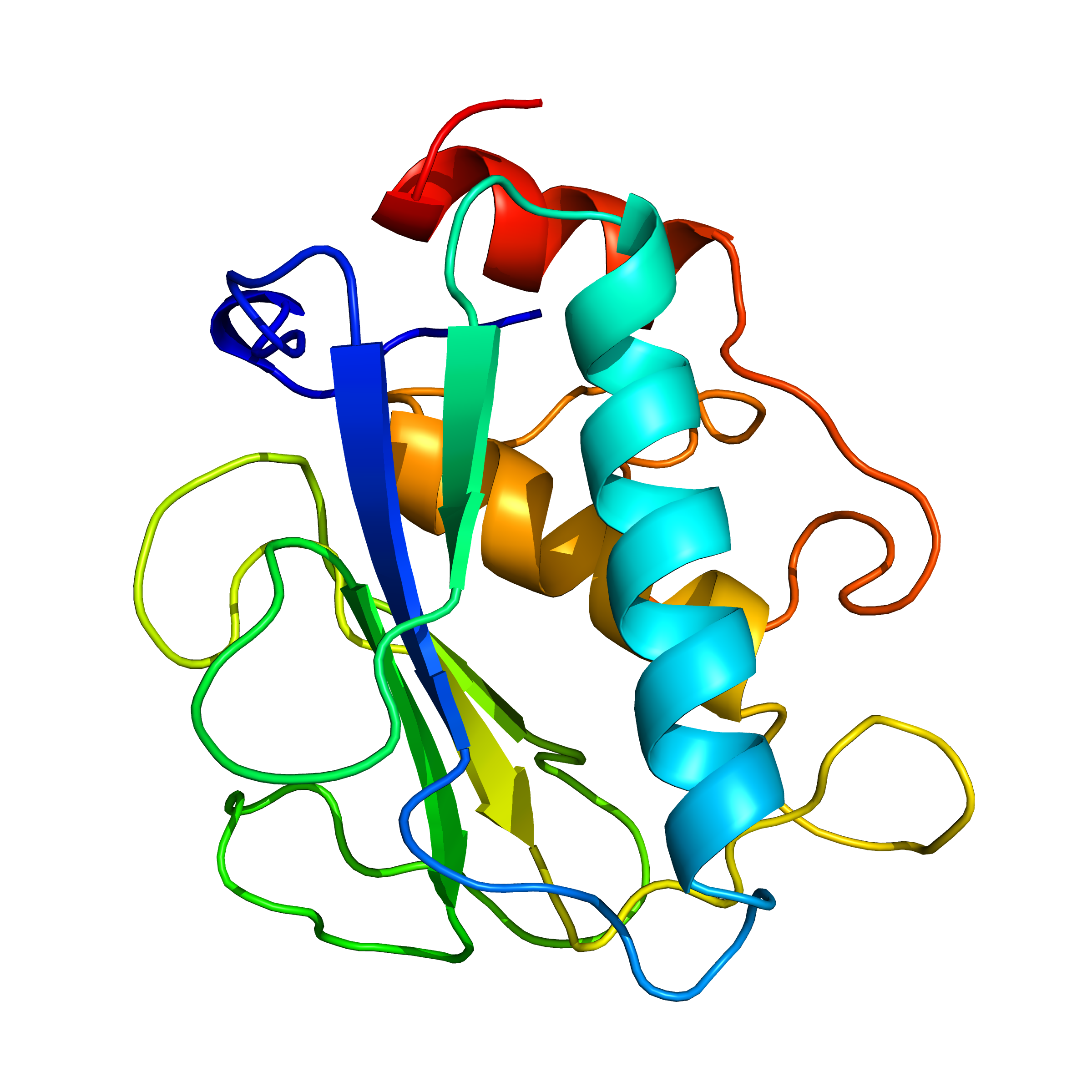 mmp7 | recombinant proteins offer